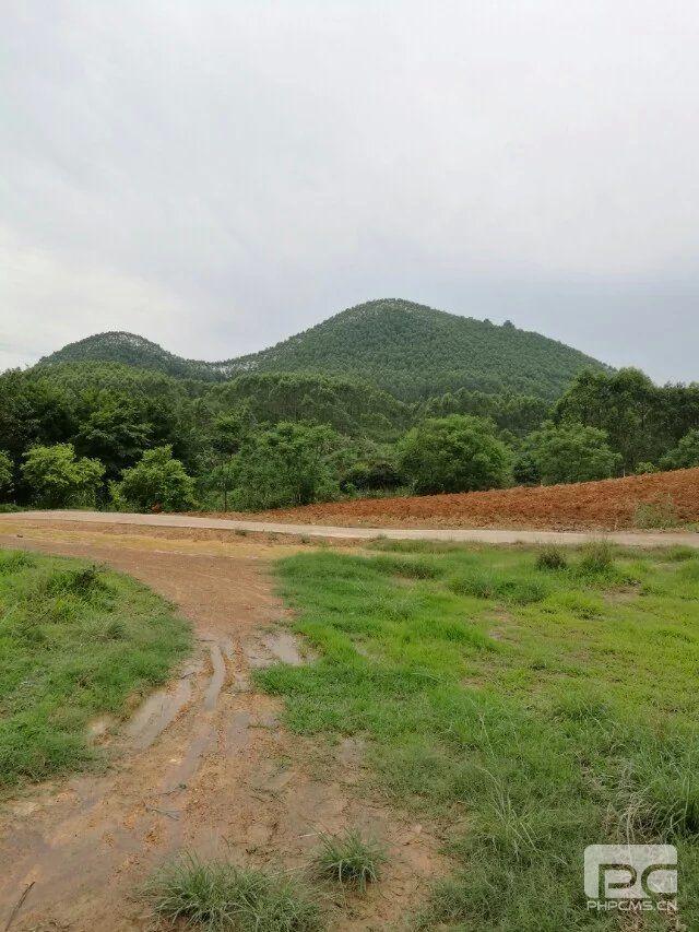 杨易达师傅在南宁郊区为客户发展农场及农家乐选址勘查